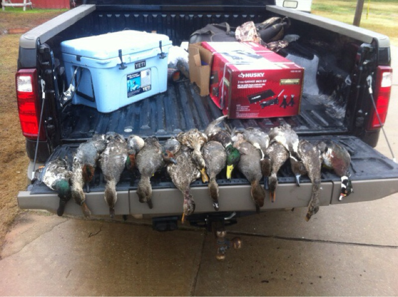 attachment 7.jpeg