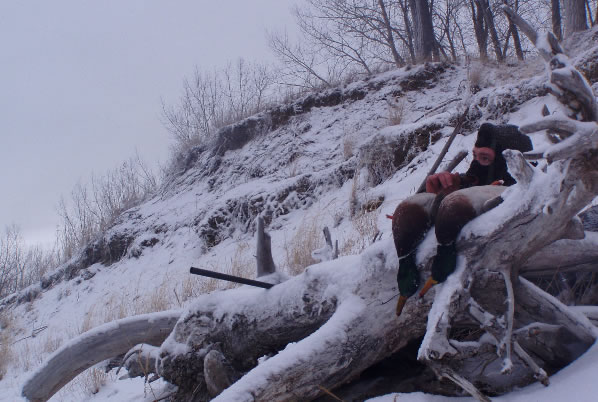 Cold Weather Duck Hunting