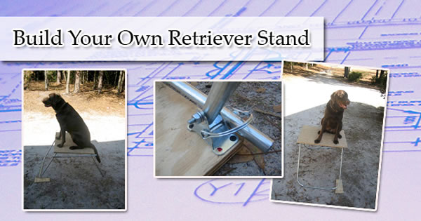 Hunting Retriever Stand – How to Build