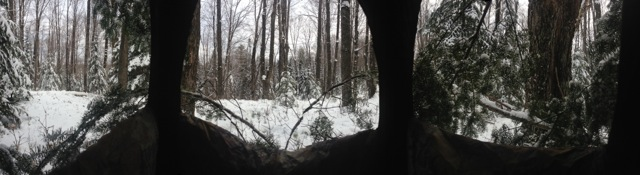 hunting stand view.JPG