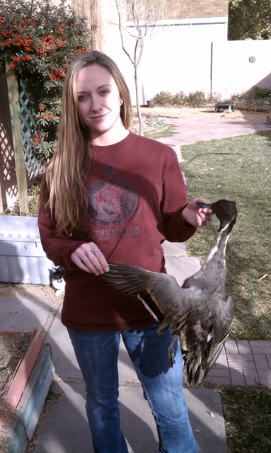 Katies first pintail.jpg