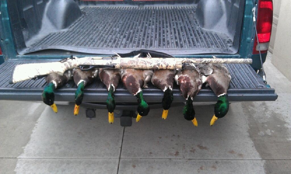 lake lowell duck hunt.JPG