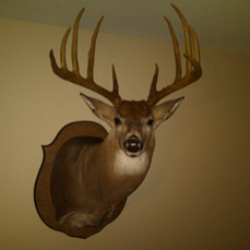 my deer.png