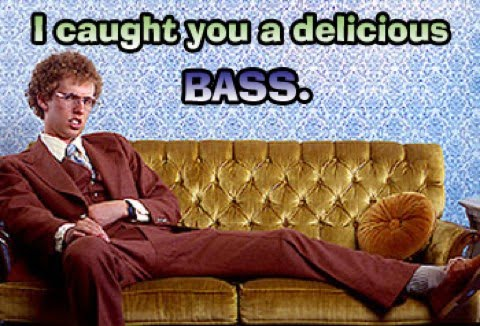 napoleon-i-caught-you-a-delicious-bass.jpg