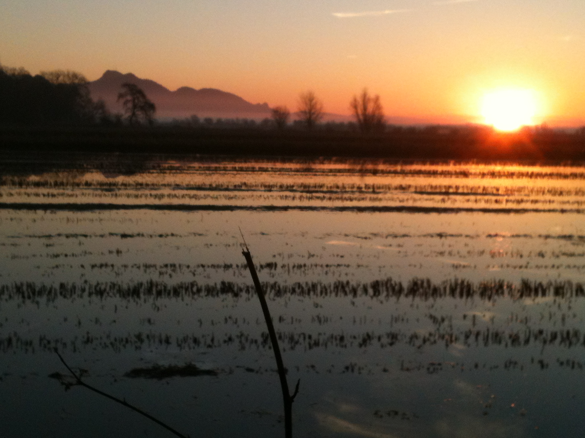 Sunrise Buttes at BCF.JPG