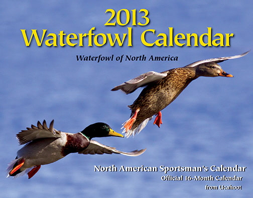 2013 Waterfowl Calendar