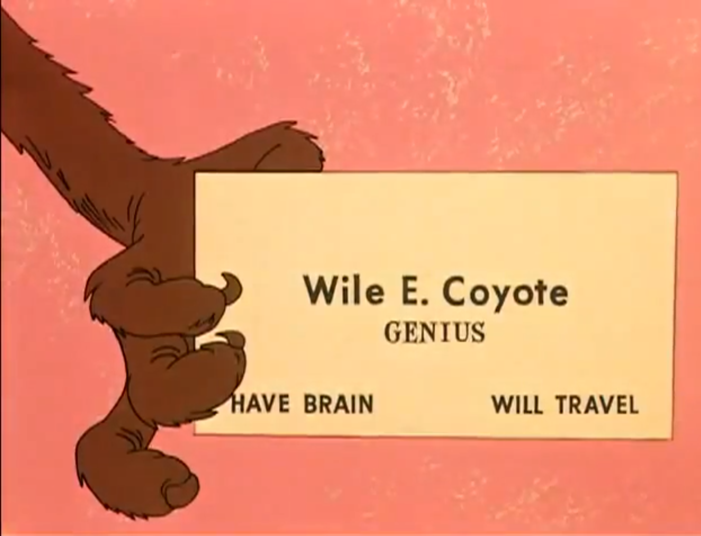 wile-e-coyte.png